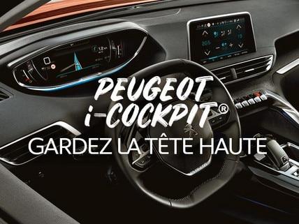 /image/98/6/peugeot-dakar-usp-i-cockpit-fr.373986.jpg
